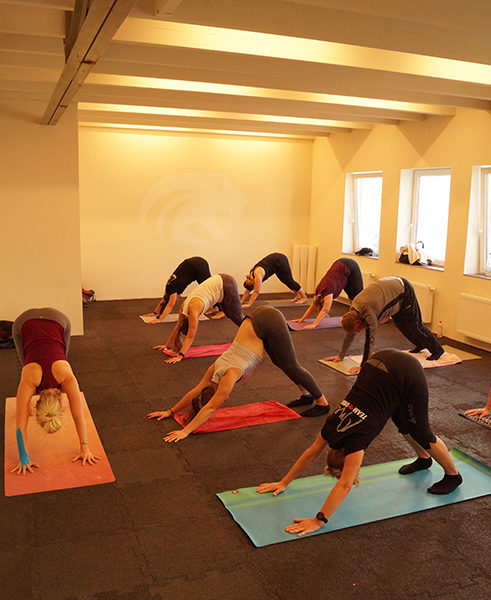 MPC GYM Aachen Yoga